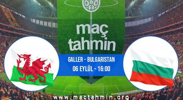 Galler - Bulgaristan İddaa Analizi ve Tahmini 06 Eylül 2020