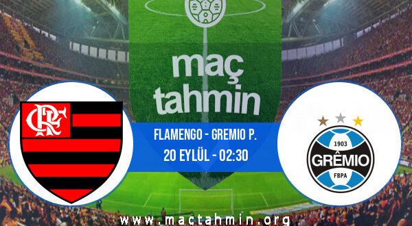 Flamengo - Gremio P. İddaa Analizi ve Tahmini 20 Eylül 2021