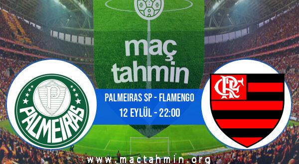 Palmeiras SP - Flamengo İddaa Analizi ve Tahmini 12 Eylül 2021