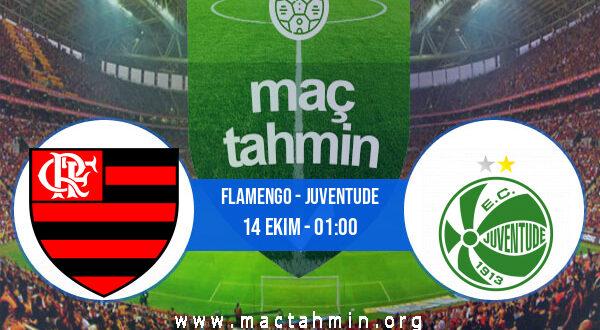 Flamengo - Juventude İddaa Analizi ve Tahmini 14 Ekim 2021